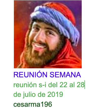 Reunion s-i del 22 al 28 de julio de 2019
