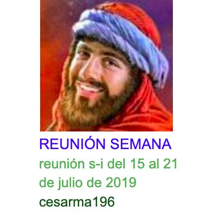 Reunion s-i del 15 al 21 de julio de 2019