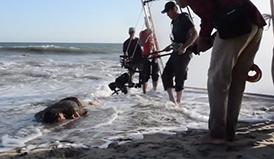 Detrás de las cámaras: La historia de Jonás, una lección de valentía y compasión