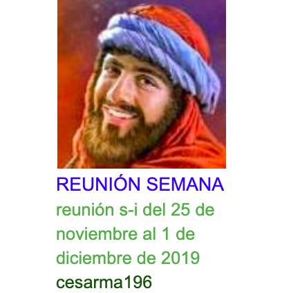 reunion s-i del 25 de noviembre al 1 de diciembre de 2019
