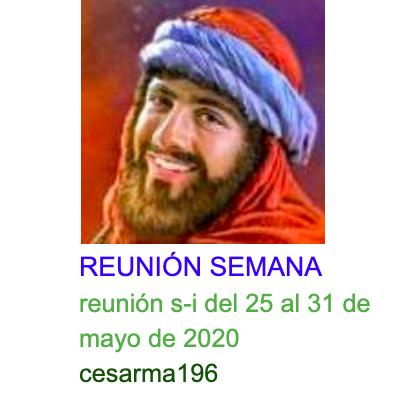 Reunion s-i del 25 al 31 de mayo de 2020