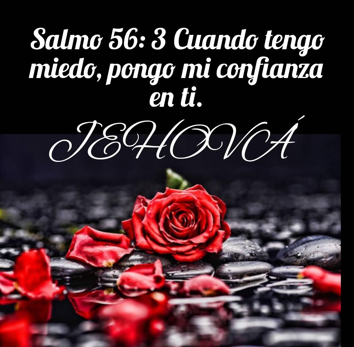 Postales con textos biblicos_20200606_123523146.jpg